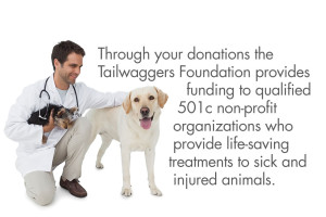 The Tailwaggers Foundation provides funding to qualified 501c non-profit organizations who provide life-saving treatments to sick and injured animals.